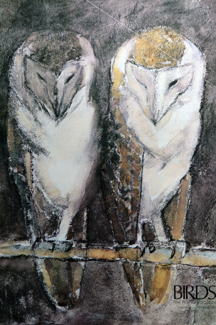 illustration of a pair of barn owls from a vintage 1970s RSPB magazine