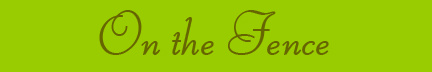 """""""On the Fence"""" blog post banner"""