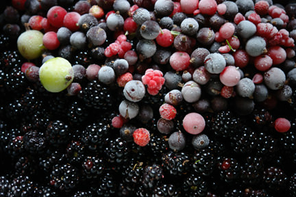 frozen berries from our garden added to wild blackberries