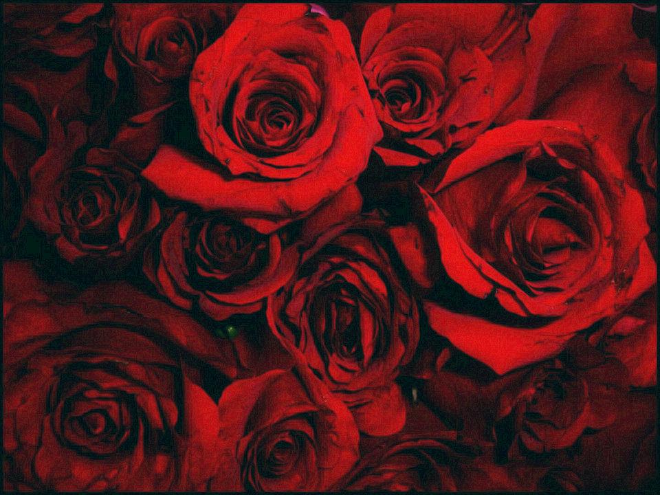 血红色– HiSoUR 文化艺术历史人文