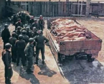"""Falsches Auschwitz-Foto mit                         """"amerikanischen"""" Soldaten und                         deutschen Leichen auf einem Lastwagenanhänger"""