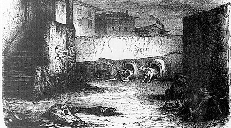 molosses de l'équarrissage de Montfaucon