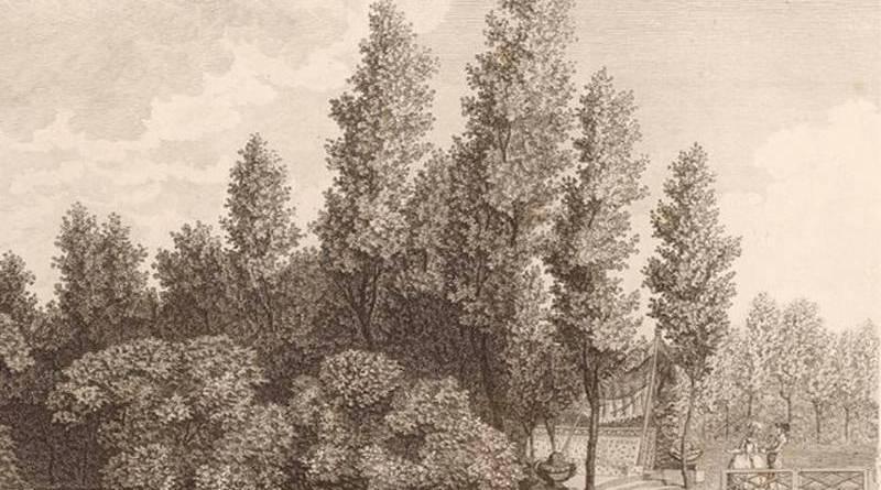 bois du jardin du duc de Chartres