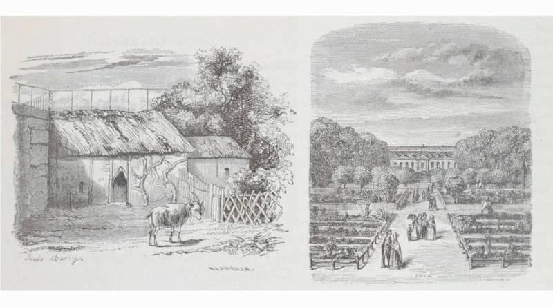 illustration du guide pour étrangers du museum d'histoire naturelle de 1878