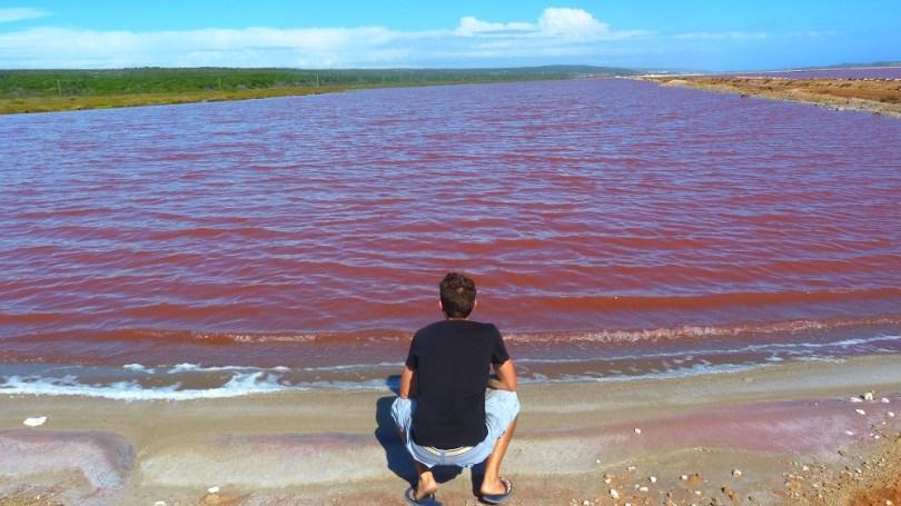 Lac rose de Port Gregory