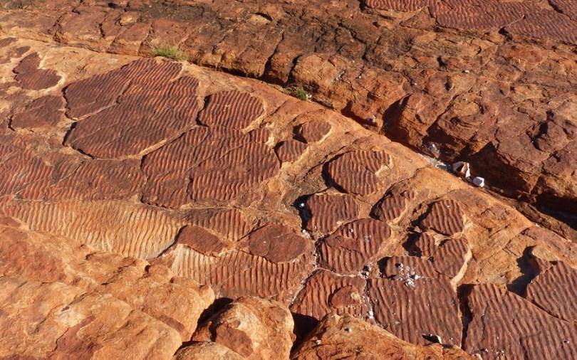 Des traces d'eau fossilisées