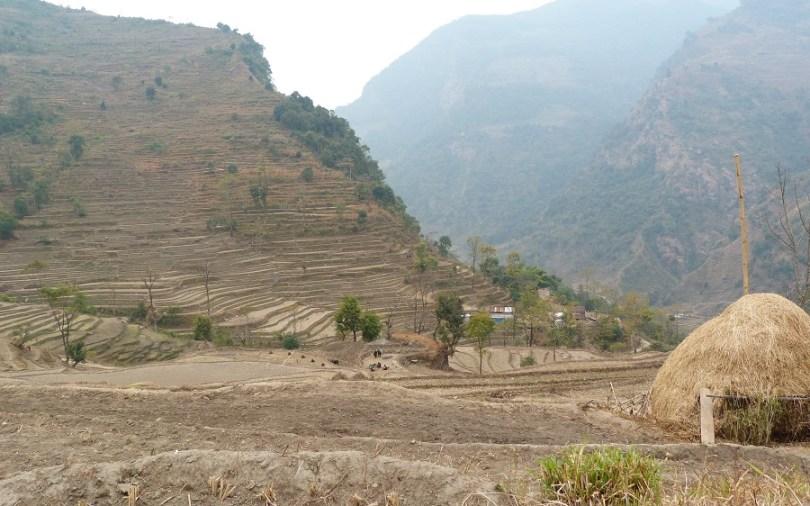 Les rizières de basse montagne