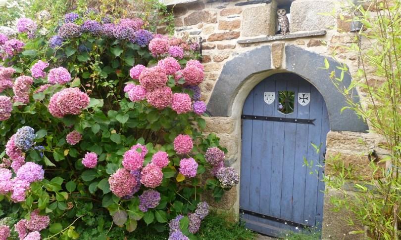 Monts arree maison granit hortensia finistere