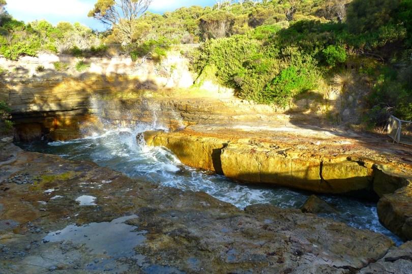 Tasmanie devil pool