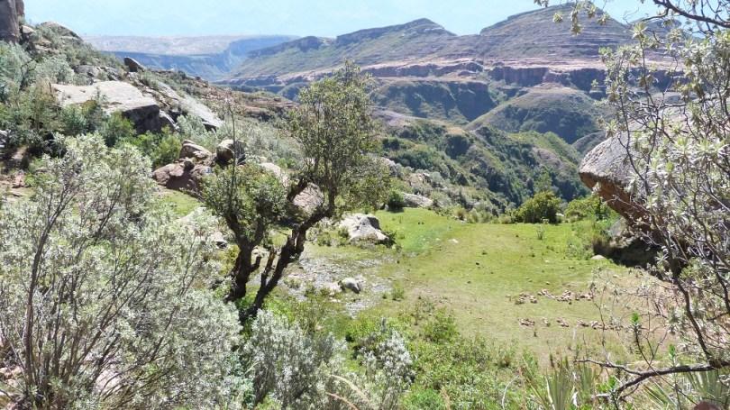 Canyon ciudad de itas