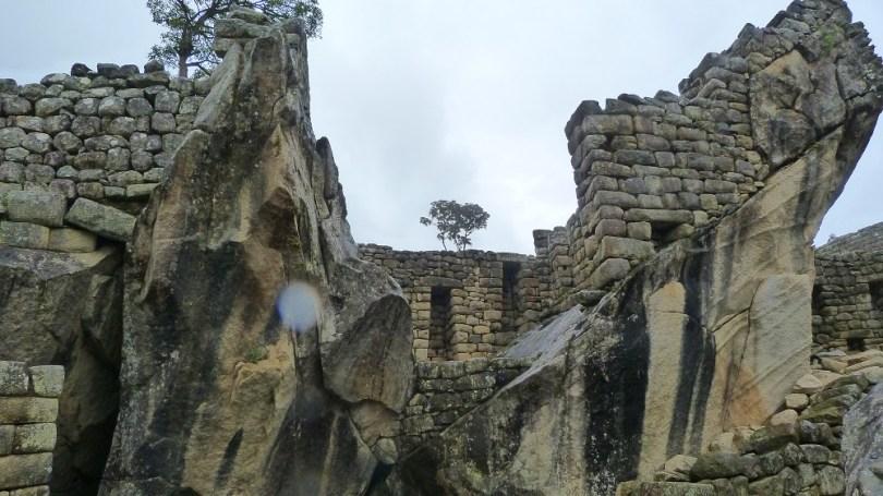 Machu Picchu temple condor