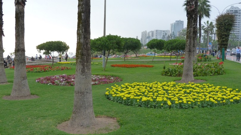 Miraflores fleurs