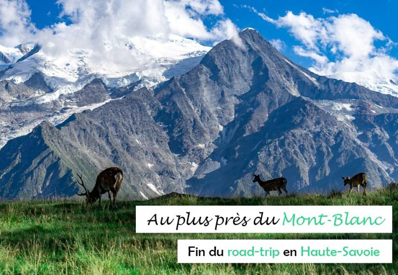 Mont Blanc parc merlet