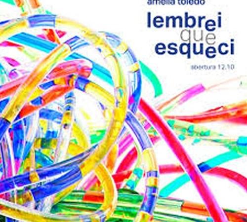 """Exposição """"Lembrei Que Esqueci"""" – Amélia Toledo – CCBB SP"""