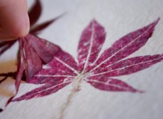 Como fazer carimbos com folhas.