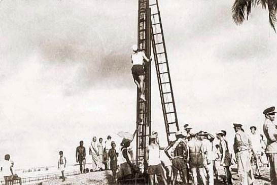 Soldados do Exército e marinheiros ajudaram a reerguer o coqueiro caído