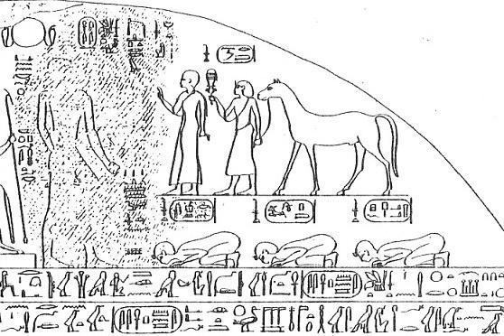 Dibujo de la parte superior derecha de la estela triunfal de Piy