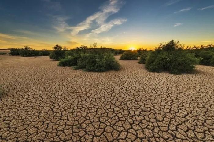 Njerëzimi ka ezauruar resurset e tokës për këtë vit