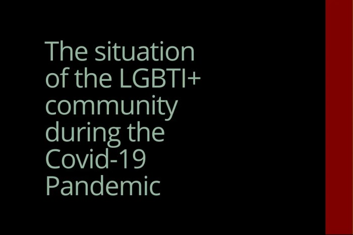 The situation of the LGBTI+ community during the Covid-19 Pandemic in Albania