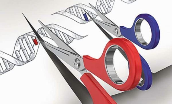 edicion-genes-china-2