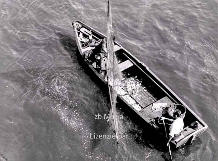 Fischfang am Rheinufer 1937