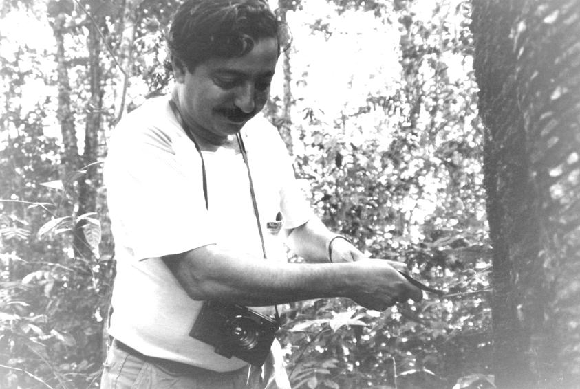 Chico Mendes che incide un albero di caucciù