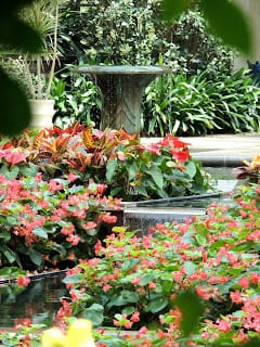 longwood gardens botanical beauty well within reach of the historic smithton inn