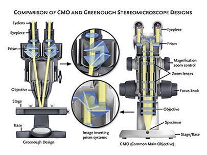 Stereo Microscope Diagram | Wiring Diagram on ccd camera wiring diagram, telephone headset wiring diagram, irrigation pump wiring diagram,