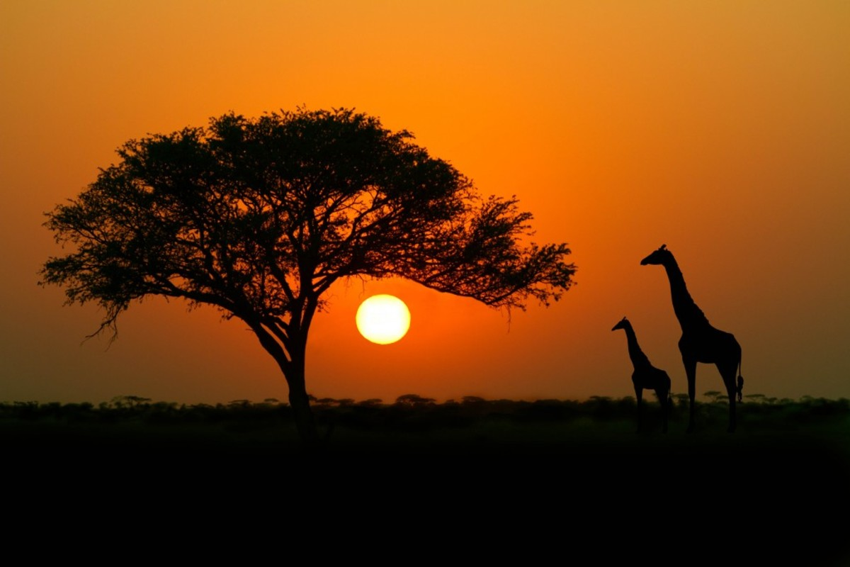 10 tempting African Countries for Return to the Motherland
