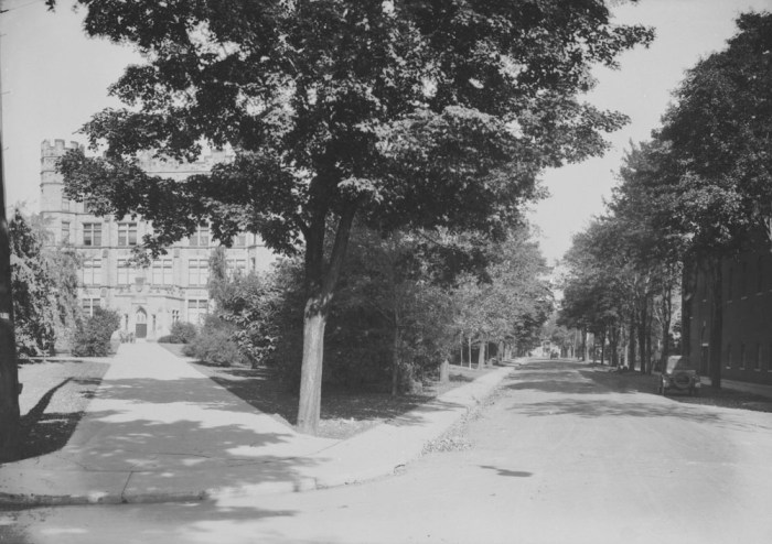 O'Connor at Argyle, looking towards the nature museum. Although you cannot see 152 Argyle from this vantage, it does give a feel for the area. Canada. Dept. of Interior / Library and Archives Canada / PA-044770.