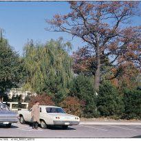 A later image. Image: City of Toronto Archives / Etobicoke Fonds (213), Etobicoke Clerk's Photographs (Series 1464), File 3, Item 10 (197?).