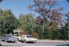 A later image. Image: City of Toronto Archives / Etobicoke Fonds (213), Etobicoke Clerk's Photographs (Series 1464), File 3, Item 10 (197?).