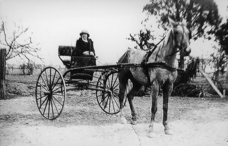 Transportation by Horse