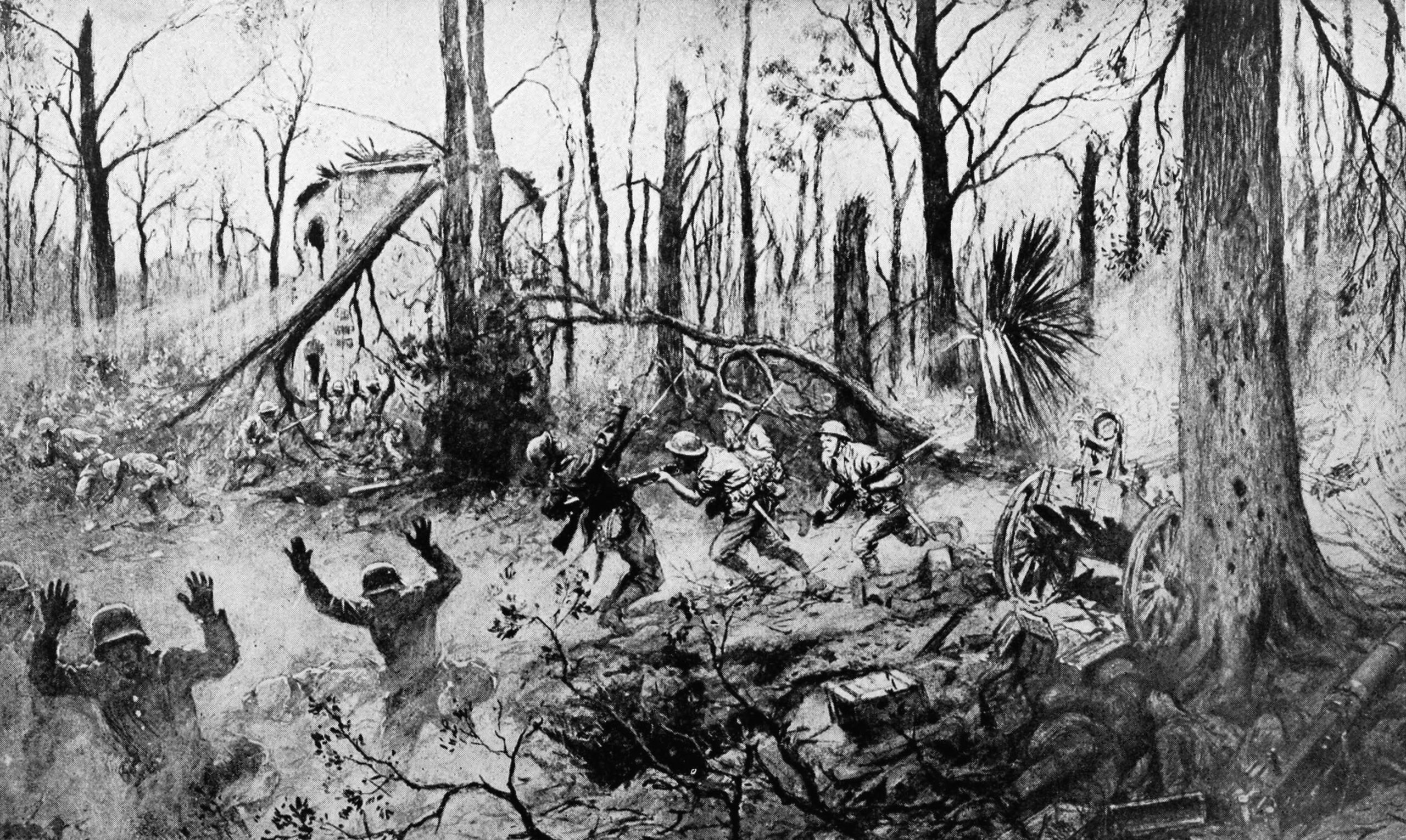 Battle Of Belleau Wood