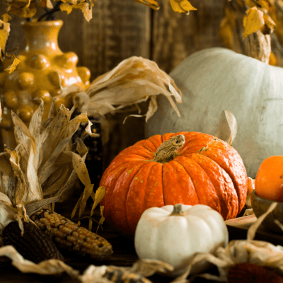 colorful pumpkins, Indian corn, and an old fashioned looking bumpy yellow vase