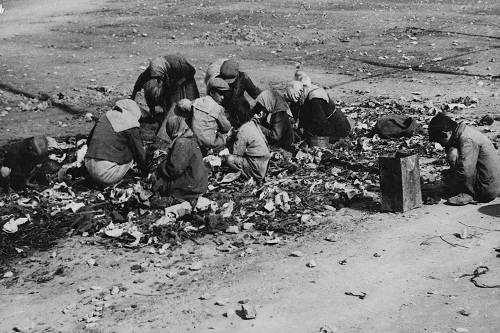 image shows people searching for food in piles of rubbish in the street in piraeus, during the winter of 1941-1942. this image is reproduced with kind permission of the international committee of the red cross
