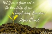 Faith Growing ~ CHRISTian poetry by deborah ann free to use