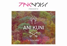 Pink Noisy - Ani Kuni (DJ Ravin Remix) - Hit Channel