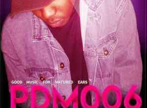 Music Fellas – Good Music For Matured Ears PDM006 (Vinny's Birthday Mix Edition)