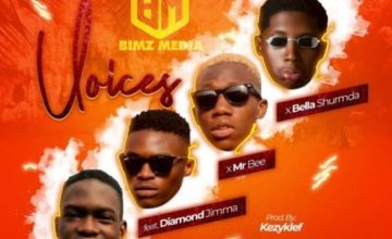 Bimz Media – Voices ft. Mr Bee, Diamond Jimma & Bella Shmurda