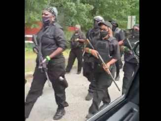 Armed Black Panthers
