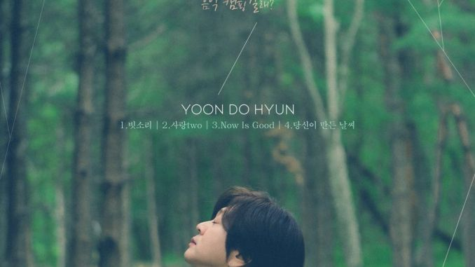 Yoon Do Hyun - Acoustic forest