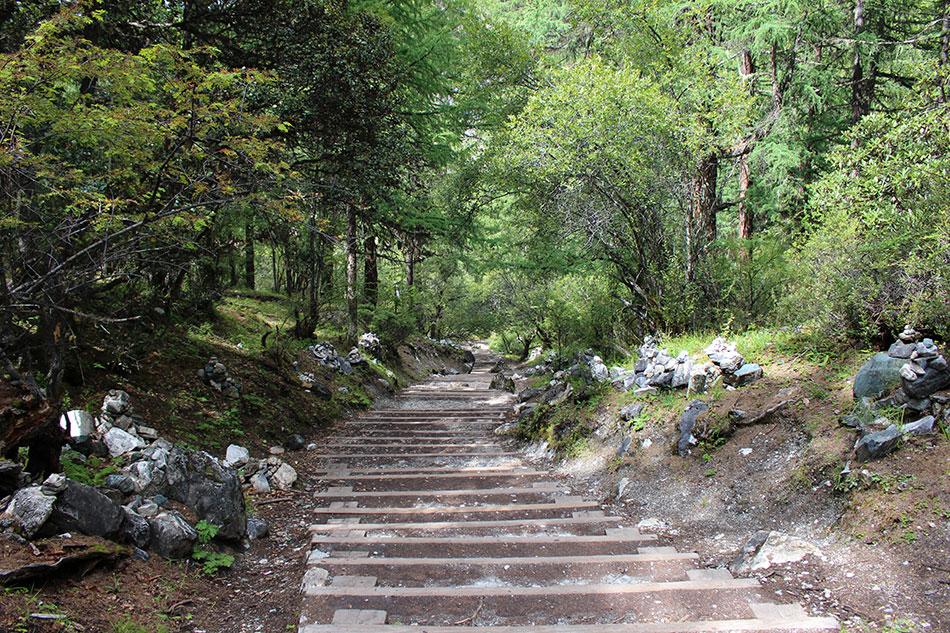 Chemin menant au lac de perle à Yading, dans le Sichuan en Chine.