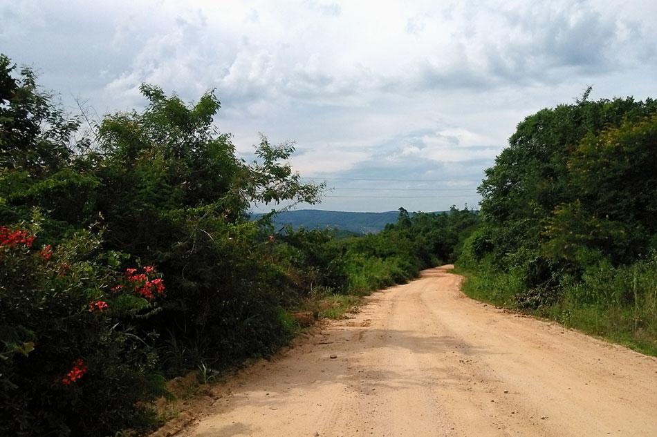Route non-goudronnée dans la région du Mpumalangan en Afrique du Sud