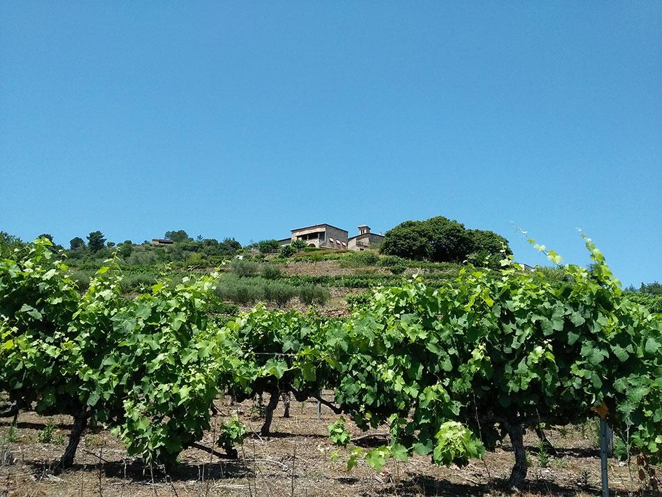 Ribes compte parmi les plus beaux villages du Sud Ardèche.