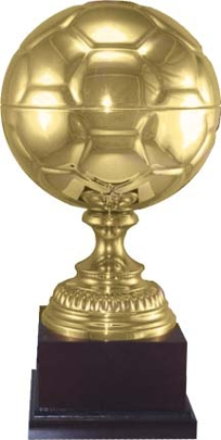 Gold Soccer Ball Trophy 1143