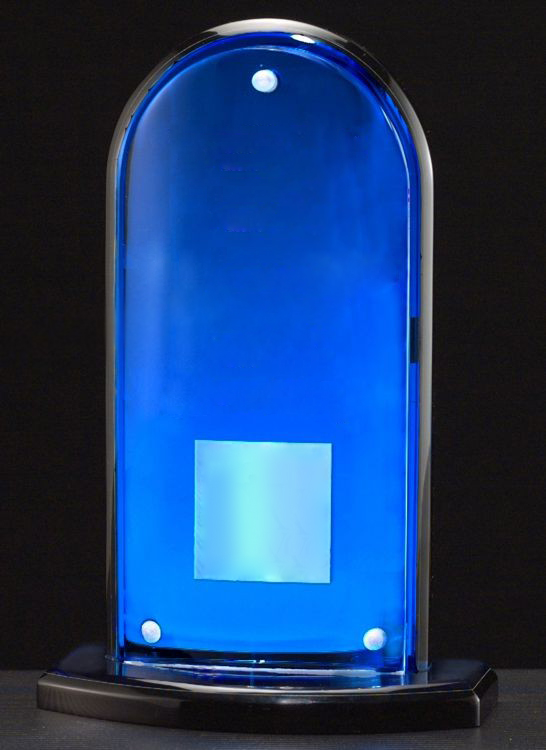 A6600 Acrylic Award - Blank