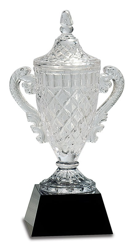 Crystal Trophy Cup CRY051L -blank