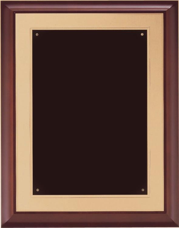 P3554 Plaque - Blank