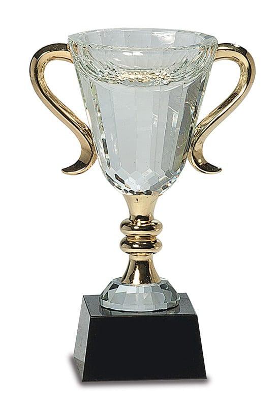 Crystal Trophy Cup CRY039XL-blank